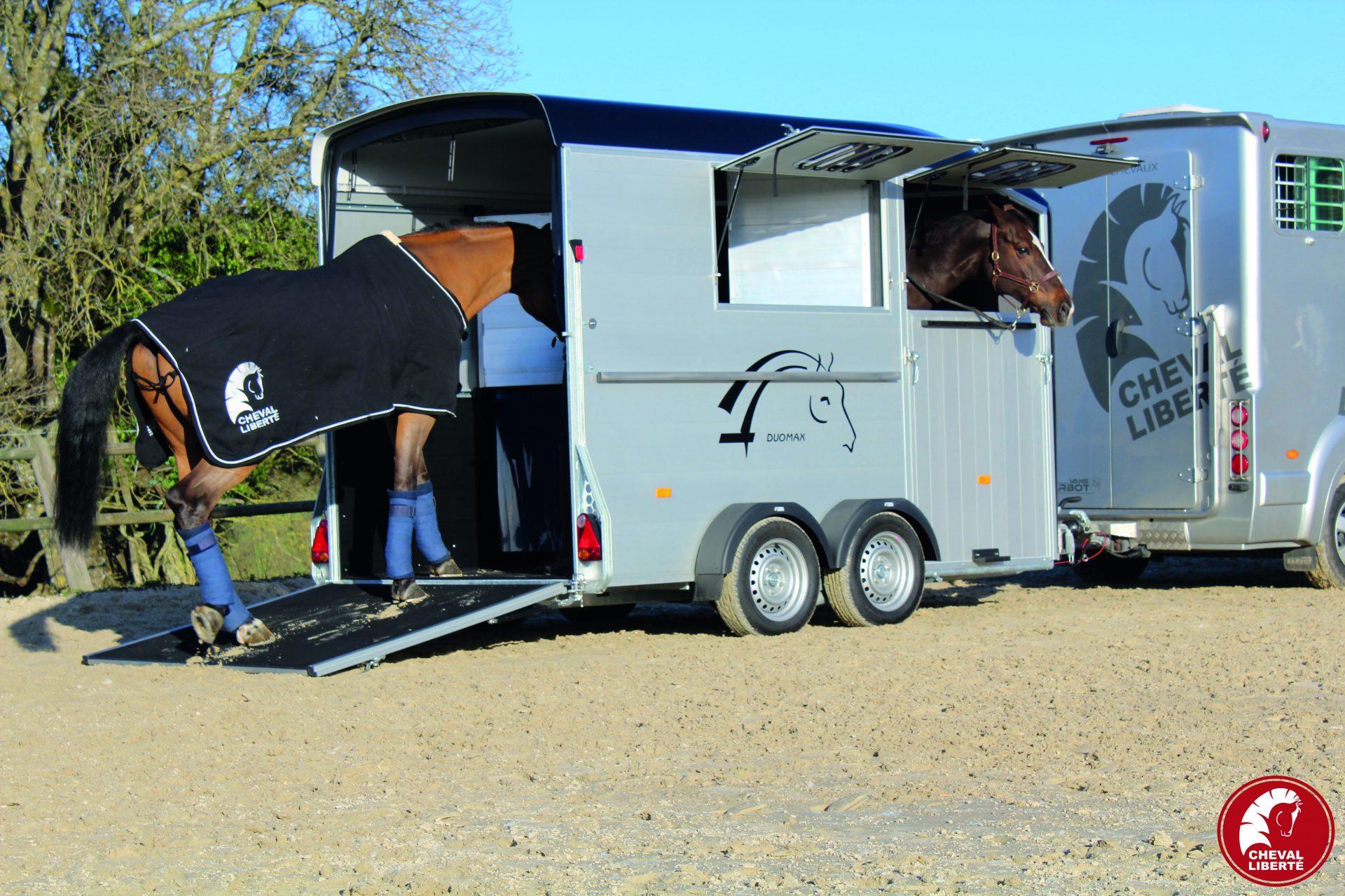 Duomax - attelé + chevaux